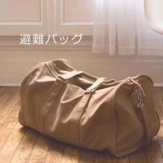 避難袋【完ミ】あかちゃんがいる家庭のリスト