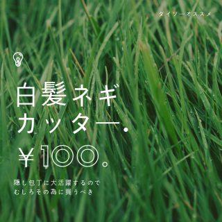 【100均】ダイソー白髪ネギカッター 活用法!