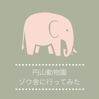 円山動物園のゾウ舎に行ってきた!|園内のゾウ舎の位置や見学時間の注意